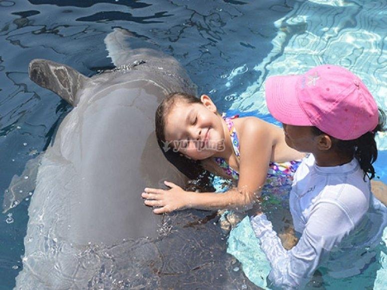 Delfinoterapia en zihuatanejo