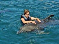 Terapia con delfines en zihuatanejo