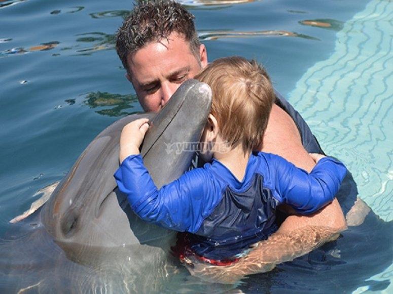 Nado con delfines para bebes