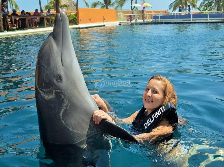 Interaccion con delfines