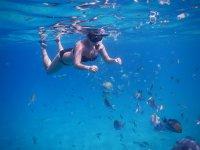 Practice snorkeling in the sea of cortez
