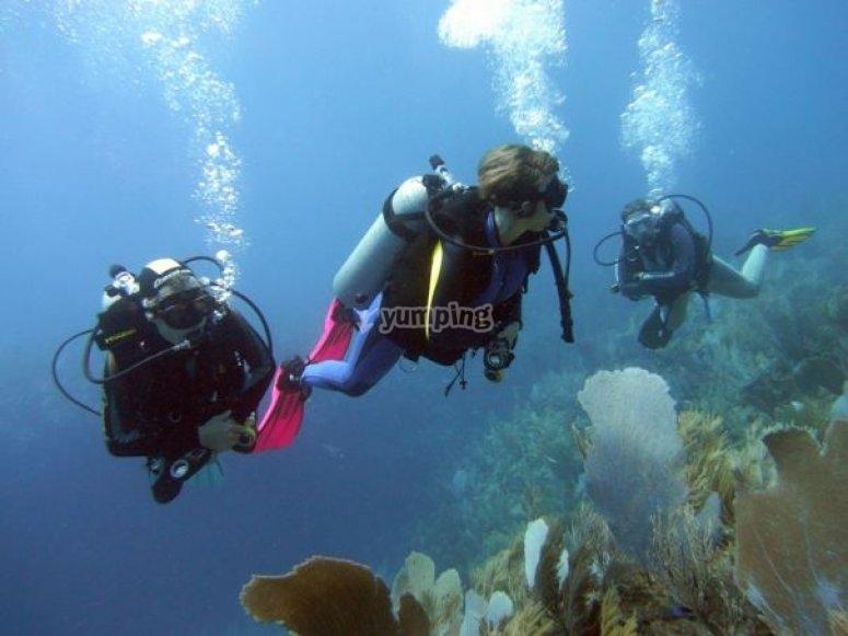 Aventuras en el mar Buceo
