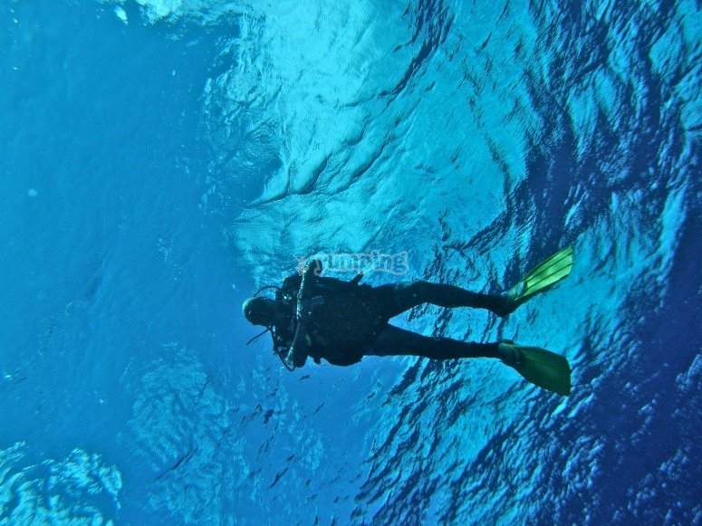 Buceo divemaster