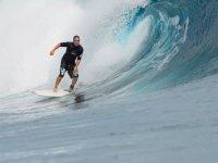 Surfer expert