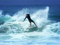 Wave expert