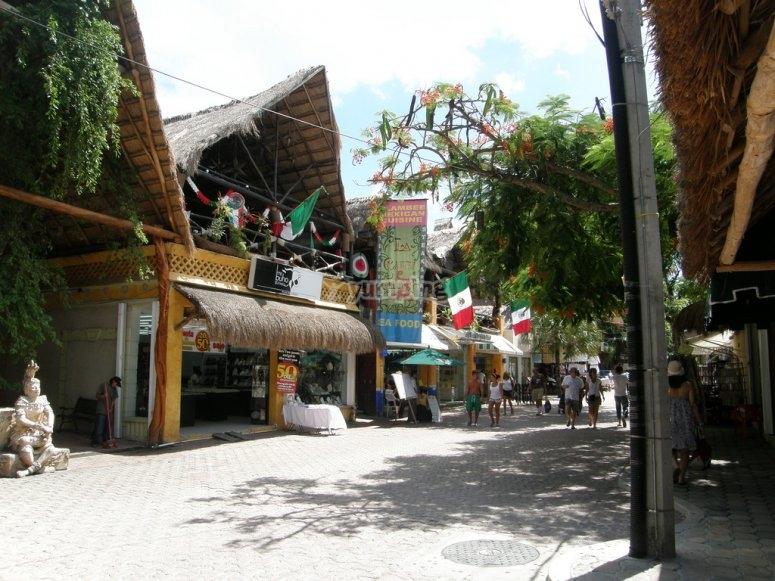 5ta avenida playa del carmen