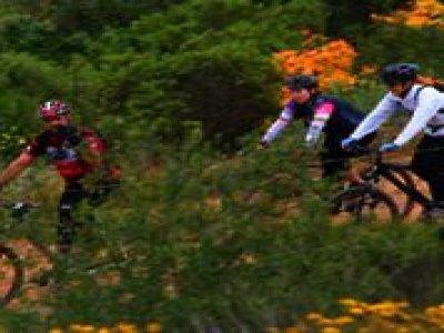 Las Cañadas Campamento Ciclismo de Montaña