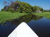 Explorar en canoa