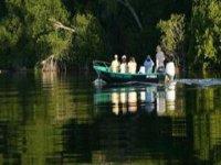 Boat trip through mangroves