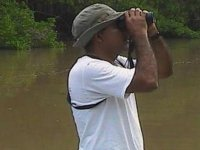 Observation of birds on walk
