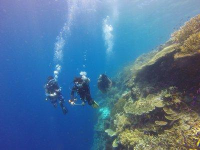 Scuba diving rich in Nitrox, Mexico CIty