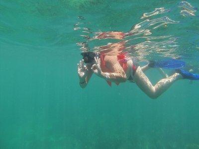 Recorrido Isla Contoy e Isla Mujeres + comida