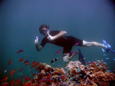Daliken sportfishing Snorkel