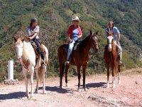Caballos adiestrados para cabalgatas