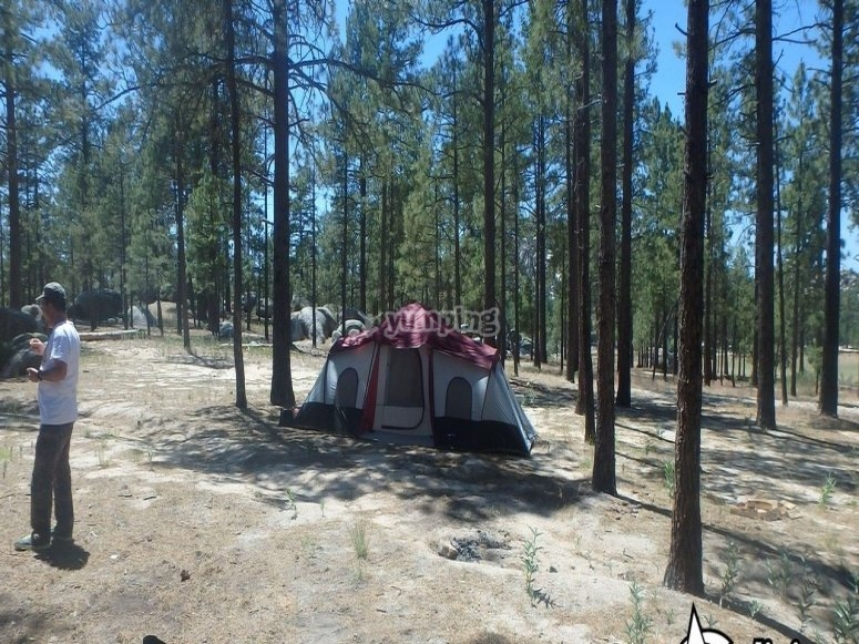 Setting the camp