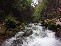Cascadas y naturaleza