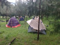 Firefly tour and camping Amecameca 1 night