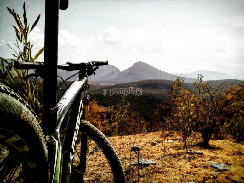 Mountain bike and landscape