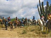 Tour en caballos