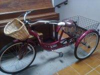 Bicicletas con canastilla