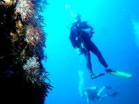 Diving in Baja California