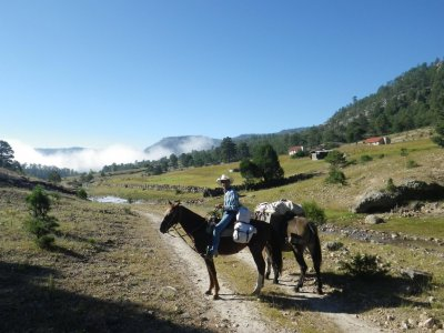 Horse ride in Creel + accommodation 2 days