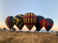 Panorama with hot air balloons