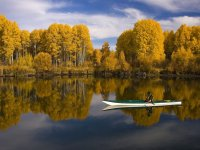 Enjoy the scenery and tranquility in Kayak