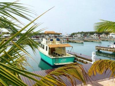 Boat ride through Cozumel Bay