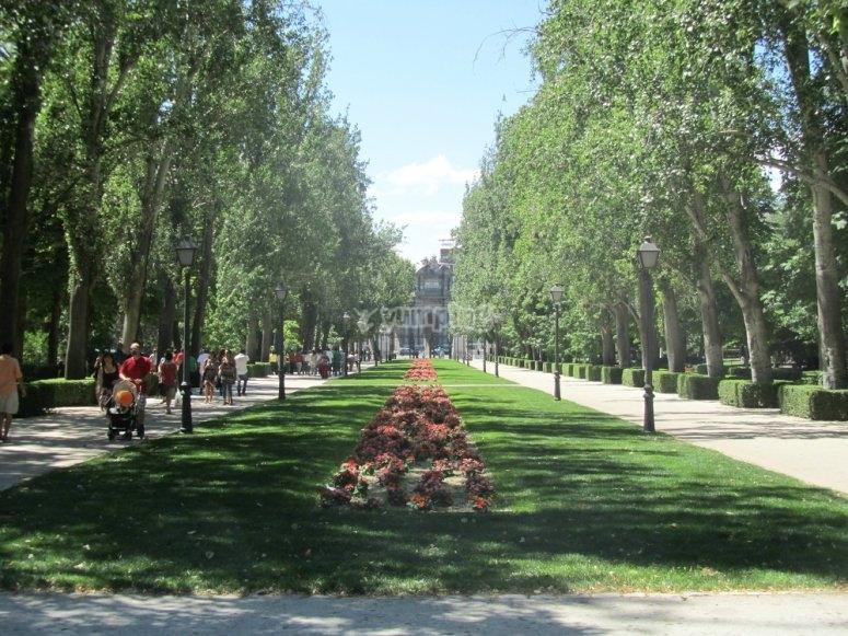 Mexico avenue