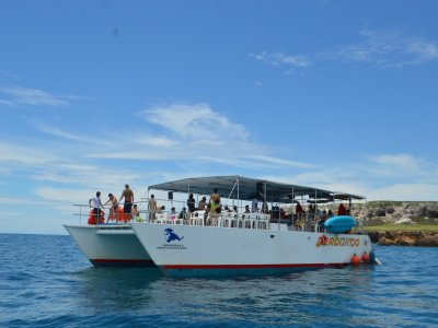 8 h. boat trip to Marietas Isles