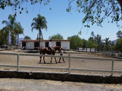 Horse ride for beginners, Querétaro
