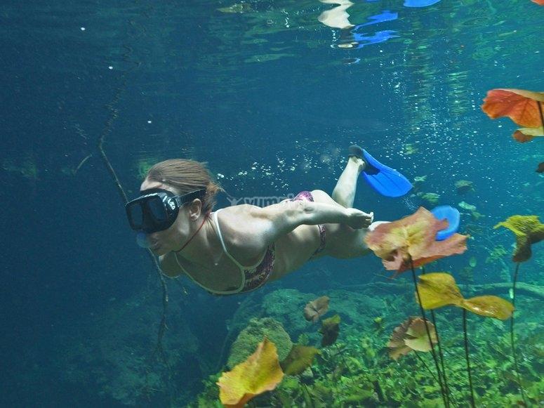 snorkel en cenote abierto