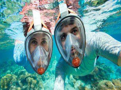 Tour Mangrove y Snorkel por la laguna Nichupte, 2h