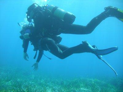 Certificado Open Water PADI en Puerto Peñasco