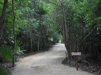 Caminatas en contacto con la naturaleza