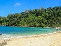 Selva tropical en la Riviera Maya
