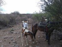 Ride + hiking route + archery + camping