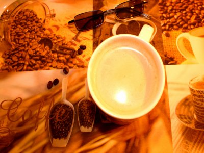 Coffee experience tour for adults from Tepic, 6 h