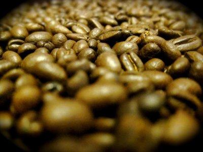 Experiencias de café desde Tepic, niños, 6h