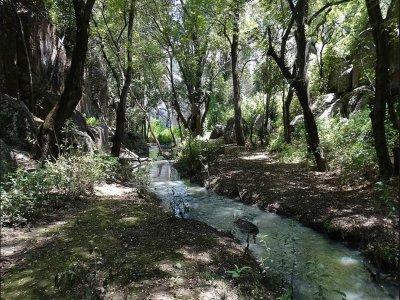 Tour with 12-hour activities through Cardonal, Hidalgo.