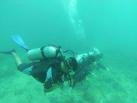 diving in the Veracruz reefs