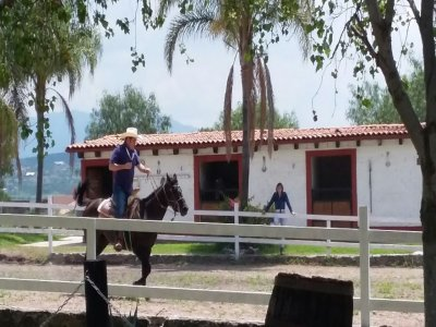1 hour horse ride at Querétaro