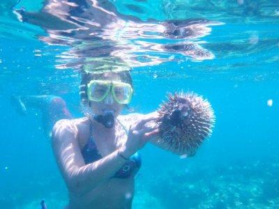 Cabo Incentives Snorkel