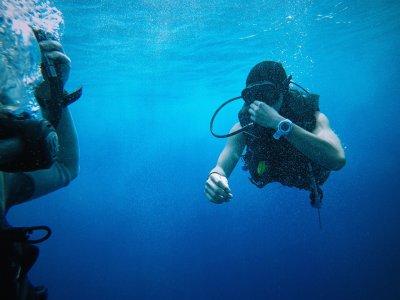 Cha Cha Cha Diveshop Snorkel