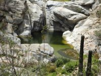 Oasis de agua