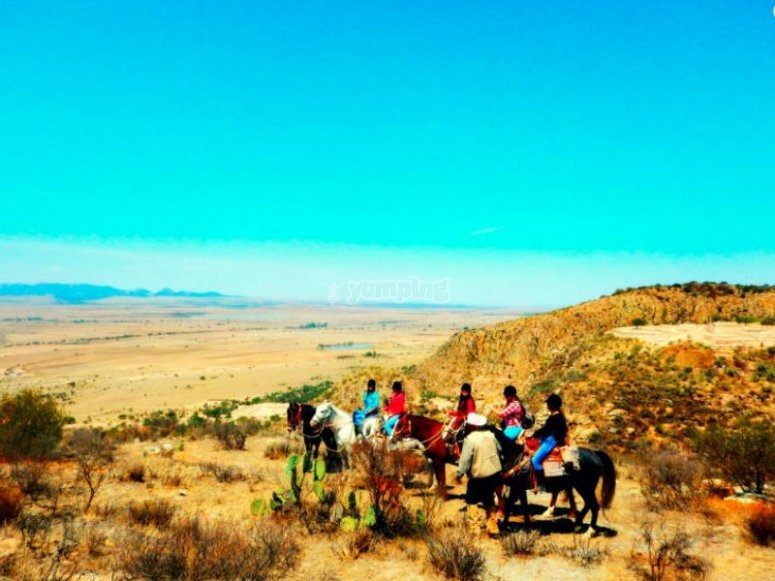 A beautiful day for a horseback ride