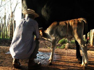 Tour eco-rural desde Guayabitos para niños