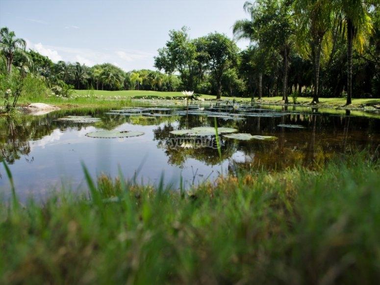 lago del golf
