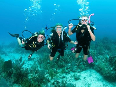 Discover Scuba Diving + accommodation